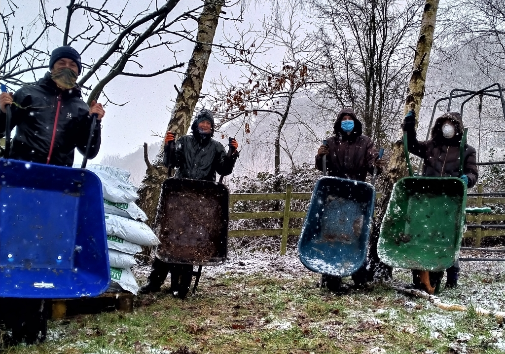 Four growers stood with wheelbarrows in a snowy paddock.